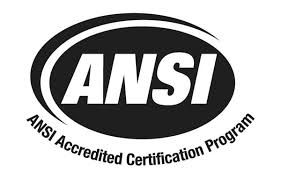 What Is ANSI Class 150?
