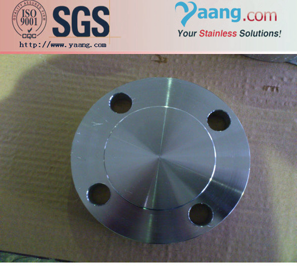 Stainless Steel Grade 321 (UNS S32100)
