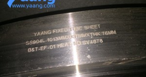 Terne Coated Finishes on Stainless Steel By yaang.com